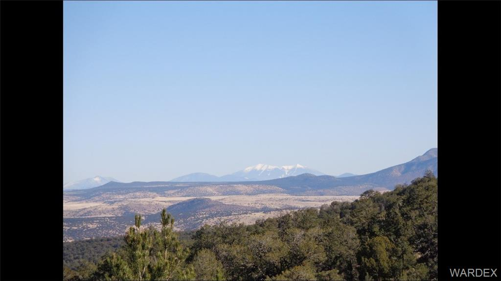Photo for Lot 656 Edge Ridge Road, Seligman, AZ 86337 (MLS # 962388)
