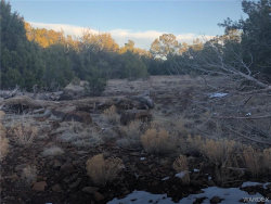 Tiny photo for Lot 656 Edge Ridge Road, Seligman, AZ 86337 (MLS # 962388)