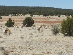 Tiny photo for Lot 714 Caruso Way, Seligman, AZ 86337 (MLS # 963512)