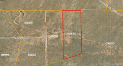 Tiny photo for Lot 1156 Chosen Few Road, Seligman, AZ 86337 (MLS # 963633)