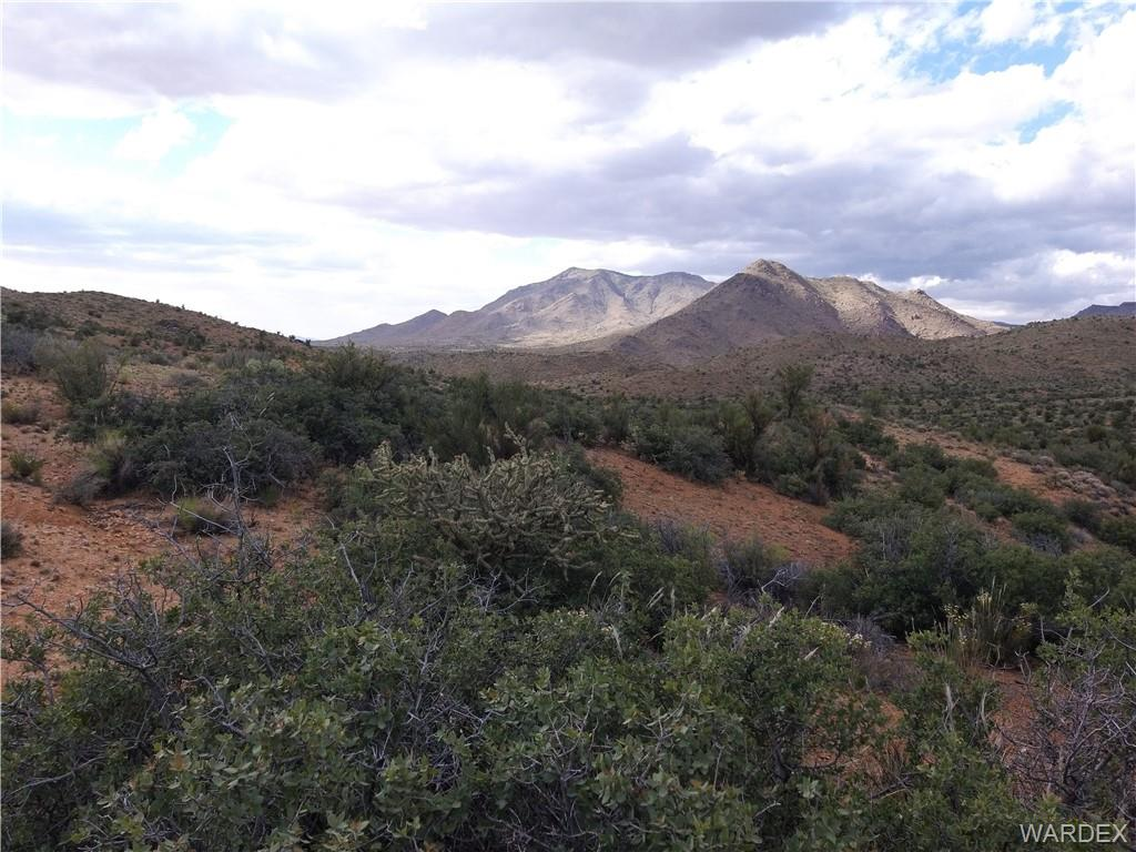 Photo for 320 Cottonwood Creek 320 Acres Road, Kingman, AZ 86401 (MLS # 964168)