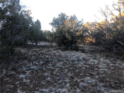 Tiny photo for Lot 1567 Lion Canyon Ranch Road, Seligman, AZ 86337 (MLS # 964494)