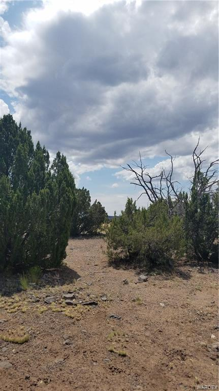 Photo for 264 G Old Highway 66, Ashfork, AZ 86320 (MLS # 964801)