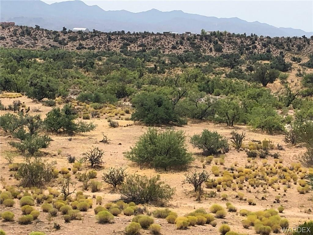 Photo for Lot 7 Tin Mountain Road, Kingman, AZ 86401 (MLS # 970565)