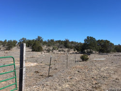 Tiny photo for Lot 636 Lucky Dog Ranch, Seligman, AZ 86337 (MLS # 926250)