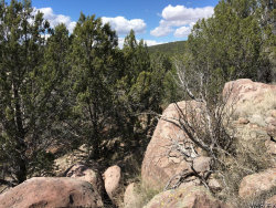 Tiny photo for Lot 87 Rick's Place Road, Seligman, AZ 86337 (MLS # 927545)