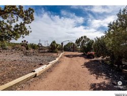 Tiny photo for 20255 E Wapiti Drive, Kingman, AZ 86401 (MLS # 939100)