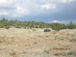 Tiny photo for 66355 Hyde Park Road, Seligman, AZ 86337 (MLS # 951111)
