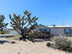 Photo of 5096 W 21st Street, Dolan Springs, AZ 86441 (MLS # 957649)