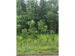 Photo of 6 LOT#6 Etna Road, Ithaca, NY 14850 (MLS # 308186)