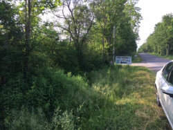 Photo of 0 WOOD RD - Parcel A, Freeville, NY 13068 (MLS # 310516)