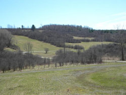 Photo of 00 Losey Hill Rd., Tyrone, NY 14887 (MLS # 310532)