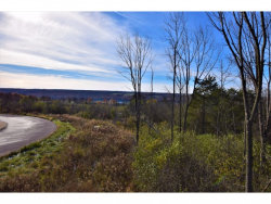 Photo of LOT 15 ROCKCRESS LANE, ITHACA, NY 14850 (MLS # 312523)