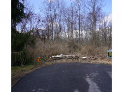 Photo of Lot 00 Grove Road, Trumansburg, NY 14850 (MLS # 313018)