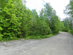 Photo of 0 Brandy Lane & Troy Road, Burnham, ME 04922 (MLS # 1222001)