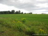 Photo of Lot 2 Vista Drive, Albion, ME 04910 (MLS # 1231748)
