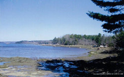 Photo of 0 Youngs Point Road, Brooksville, ME 04617 (MLS # 1293890)