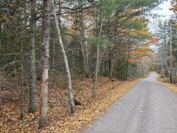 Photo of 16 Evergreen Point Road, Sullivan, ME 04664 (MLS # 1325618)