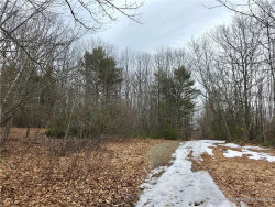 Photo of 0 Jacob Buck Pond Road, Bucksport, ME 04416 (MLS # 1345661)