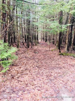 Photo of Lot 4 Cranberry Horn Hill Road, Harpswell, ME 04079 (MLS # 1347700)