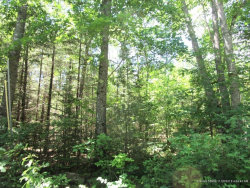 Photo of M11 L7-4 Weeks Road, Palmyra, ME 04965 (MLS # 1357321)