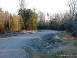 Photo of Lot 4 Woodland Drive, Trenton, ME 04605 (MLS # 1357468)