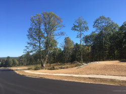 Photo of Lot 14 Village View Lane, North Yarmouth, ME 04097 (MLS # 1371637)