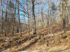 Photo of 00 Curtis Pond Road, Thorndike, ME 04986 (MLS # 1403725)