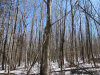 Photo of Lot 4 Kennebec Road, Dixmont, ME 04932 (MLS # 1409596)