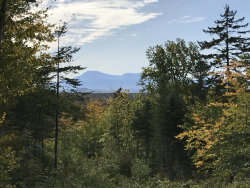 Photo of 1-A-37 Ackley Pond Road, Mount Chase, ME 04765 (MLS # 1415652)