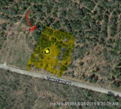 Photo of 00 Town Farm Road, Bucksport, ME 04416 (MLS # 1416464)