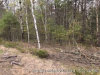 Photo of Lot 1 Map 18 Lot 16A Route 1 North, Freeport, ME 04032 (MLS # 1416543)