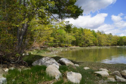 Photo of 54 Dwelly Point Road, Franklin, ME 04634 (MLS # 1418372)