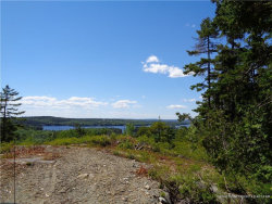 Photo of Lot 18 Pond Road, Gouldsboro, ME 04669 (MLS # 1421813)
