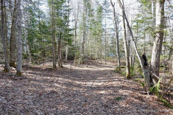 Photo of 0 Foxfield Farms Road, Bar Harbor, ME 04609 (MLS # 1424768)