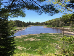Photo of A Chicken Mill Pond Road, Gouldsboro, ME 04607 (MLS # 1425264)