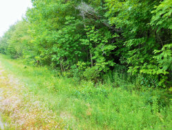 Photo of M3 L19 Church Hill Rd, Dixmont, ME 04932 (MLS # 1428311)