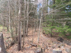 Photo of 0 Allen Range Road, Freeport, ME 04013 (MLS # 1434848)