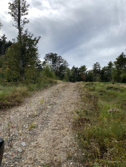 Photo of 00 Harpswell Neck Road, Harpswell, ME 04079 (MLS # 1435298)