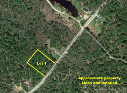 Photo of 00 lot 1 Morgan Bay Road, Blue Hill, ME 04629 (MLS # 1436875)
