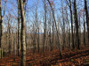 Photo of 47 Dodge Mountain Road, Rockland, ME 04841 (MLS # 1438763)
