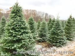 Photo of Lot 10 Christmas Creek Subdivision, Cumberland, ME 04021 (MLS # 1439146)