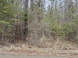 Photo of lot 7-B Johnson Flat Road, Pittsfield, ME 04930 (MLS # 1440096)