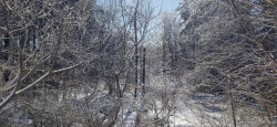 Photo of Lot 24-02 Sam Page Road, Acton, ME 04001 (MLS # 1445330)