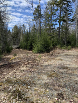 Photo of 0 Crooked Road, Town Hill, Bar Harbor, ME 04609 (MLS # 1449080)