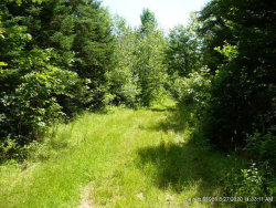 Photo of 0 McCarty Road, Pittsfield, ME 04967 (MLS # 1451195)