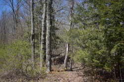 Photo of L 4-27 Page Road, Palmyra, ME 04965 (MLS # 1452172)