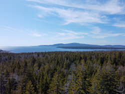 Photo of 0 Summer Harbor Road, Winter Harbor, ME 04693 (MLS # 1456637)