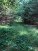 Photo of 00 Libby Hill Road, Albion, ME 04910 (MLS # 1457410)
