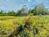Photo of 0 Route 7 Route, Dixmont, ME 04932 (MLS # 1464782)